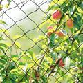 Широкая x 5 м сверхпрочная анти-сетка для сада не запутывается и многоразовая долговечная защита от птиц оленей