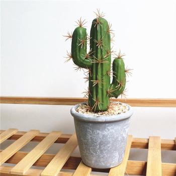 Gerçekçi sahte bitkiler tropikal saksı bitkileri yaratıcı süsler kaktüs simülasyon etli Bonsai ev dekor (dahil olmak üzere tencere)