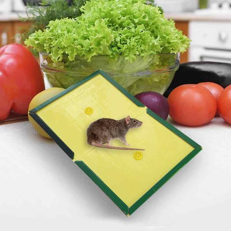 Panneau de souris utile piège à colle de Rat collant panneau de colle de souris Super fort piège de capteur de souris Non toxique lutte antiparasitaire rejeter livraison directe