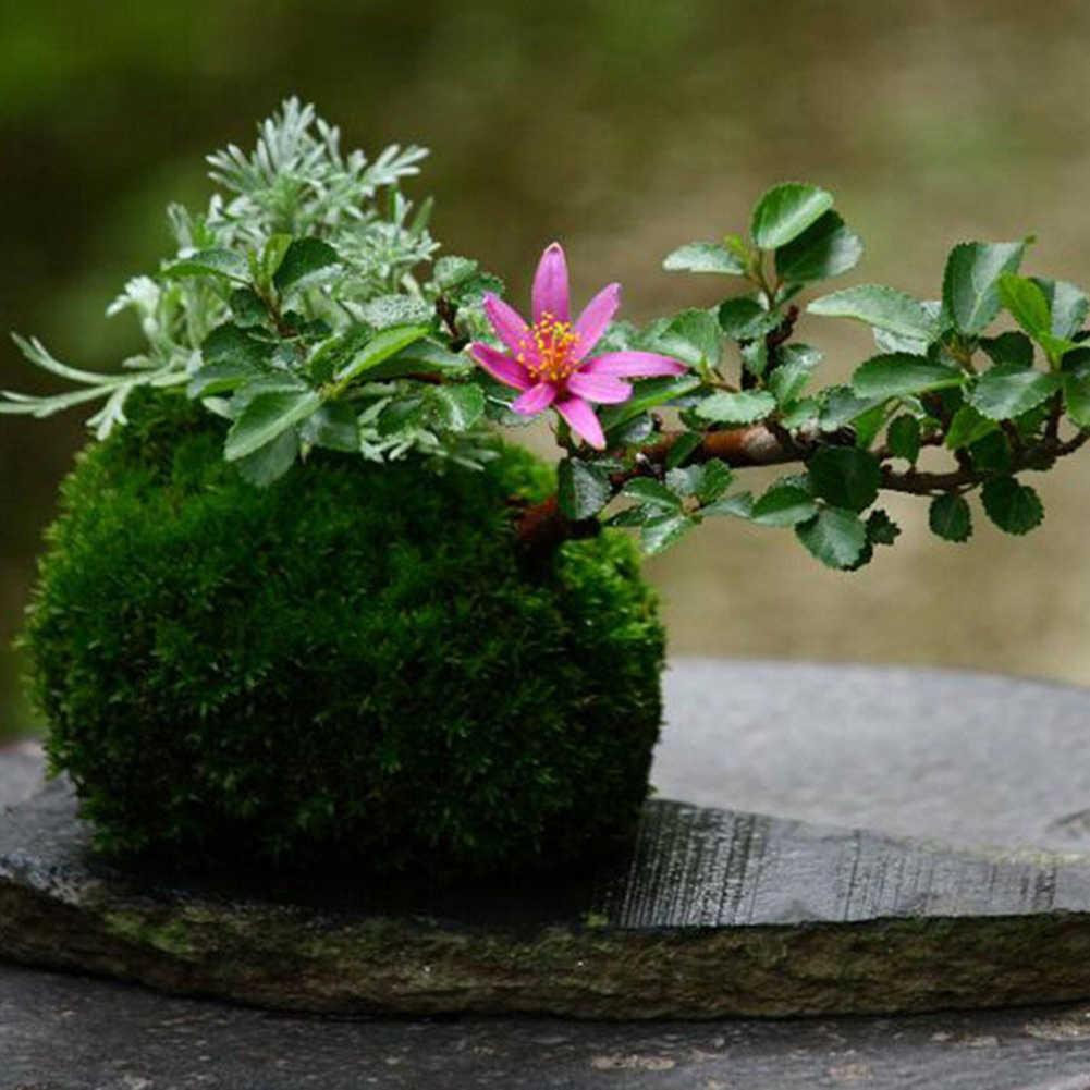 الإبداعية نسج موس الكرة على شكل زهرة الأواني المقالي حامل الطبيعية زارع شجرة بونساي صناعية وعاء ماصة ديكور المنزل حديقة