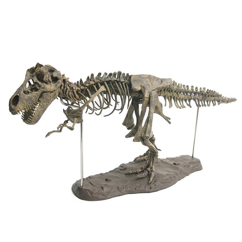 4D Tyrannosaurus Rex Excavation Science Kit Dig Up Dinosaur and Assemble a 4D Skeleton Ancient Animal Fossil Skull