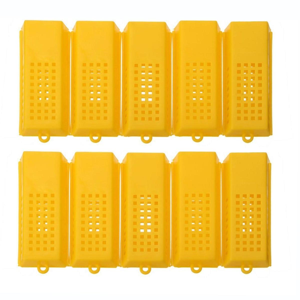 Ingenious 10pcs/lot New Professional Queen Bee Butler Cage Catcher Trap Case Beekeeping Tool Home & Garden