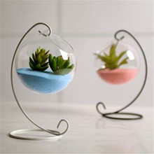 High Borosilicate Glass Hanging Glass Flower Planter Vase Te