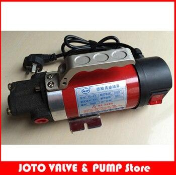 327 Cast Iron Fuel Oil Pump Mini 24V DC Pump 2.5L/min Gear Oil Pump YD-1.4