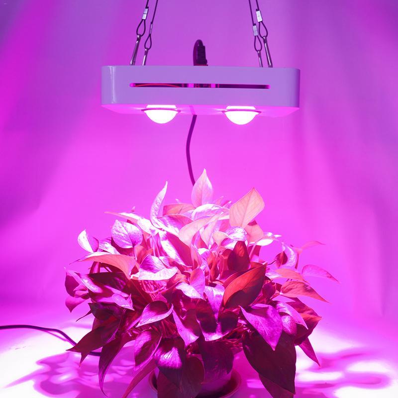 New LED Grow Fill Light 1000W Full Spectrum LED 2COB Growth Vegetable Plant Lamp Universal for Greenhouse AC90-140V/170-300V