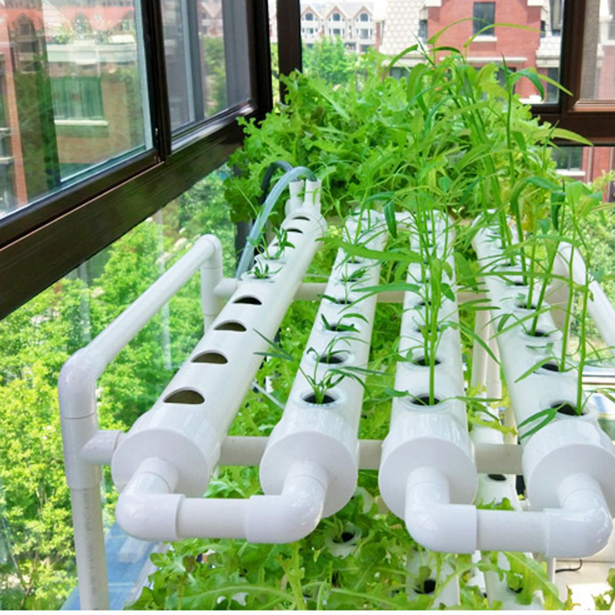 Hydroponic-Rack-Holder Planting-Box Vegetables-Tools Garden Grow Plastic White 220V 36-Sites