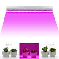 36 W Cresce A Luz LED Planta Crescer Lâmpadas Único Tubo T5 T5 Tubo da Lâmpada Interior Iluminação de Espectro Completo Crescer