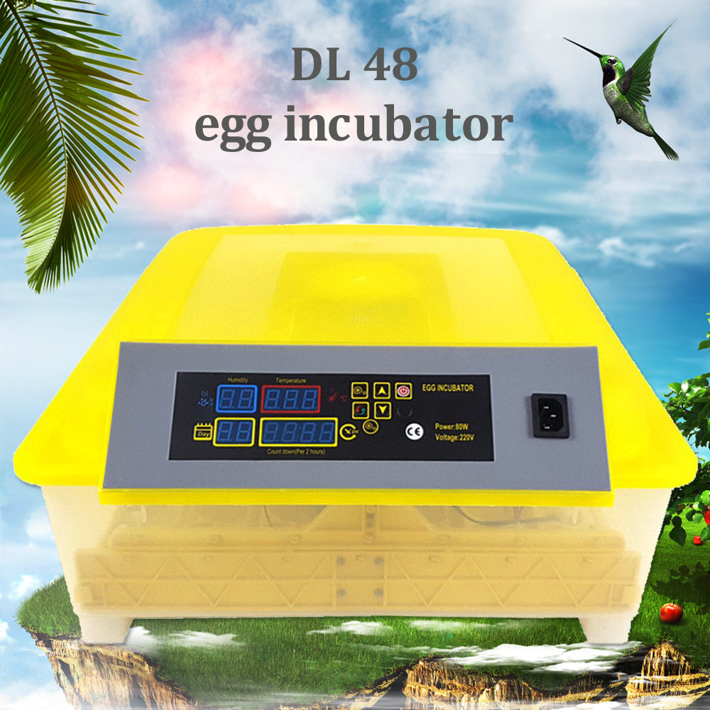 Fully Automatic Egg Incubator Mini Industrial Brooder Hatchery Machine For Hatching 48 Chicken Duck Quail Bird Poultry EggsFully Automatic Egg Incubator Mini Industrial Brooder Hatchery Machine For Hatching 48 Chicken Duck Quail Bird Poultry Eggs