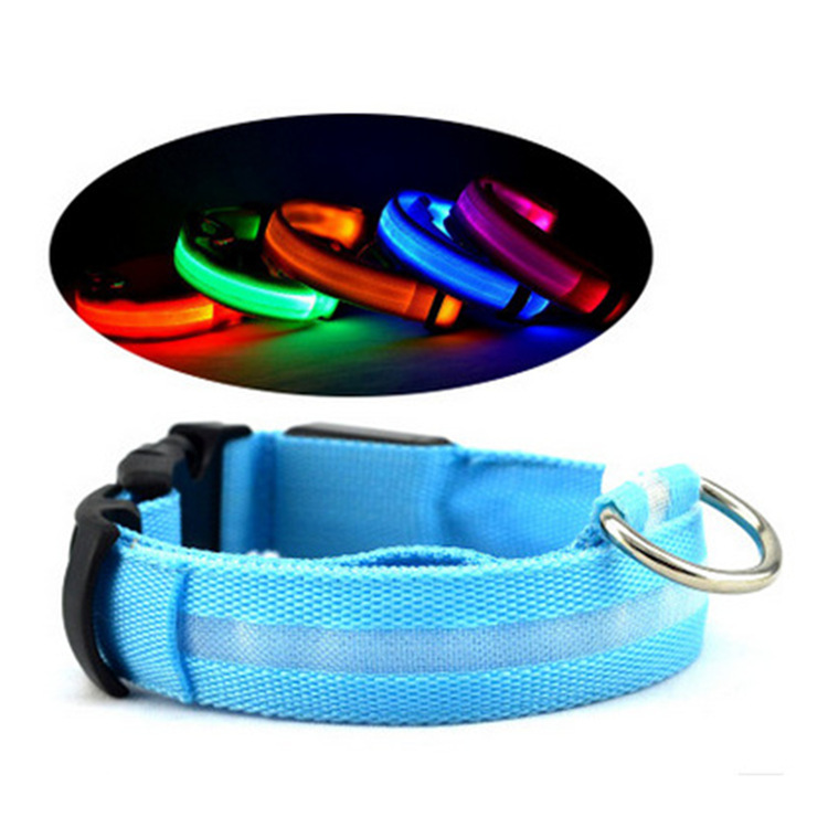 LED dog with collar luminous glow pet night cool