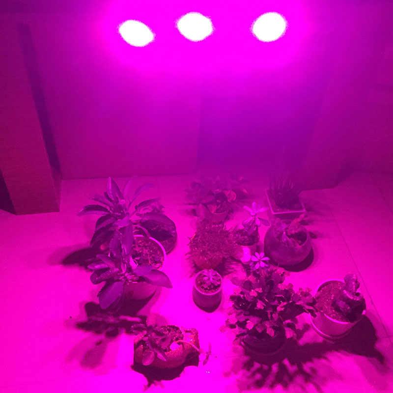 Крытый культивированный сеялка светодиодный светильник для выращивания растений Гидропоника рост семена Veg растущие огни Тепличный цветок Growbox 3 головы