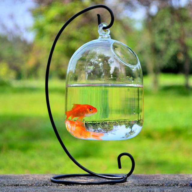 16cm Fish Tank Hanging Glass Aquarium Fish Bowl Fish Tank Flower Plant Vase with Rack Fishbowls for Home Decor