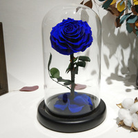 Glass Cover Fresh Preserved Rose Flower Barbed Rose Flores For Wedding Marriage Home Party Decoration Valentine'S Day Gift Blu