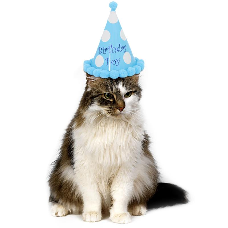 Cute Pet Dog Cat Headgear Birthday Hats Dot With Hairball Cap Party Cone Hat For Celebration Decorations Accessories In Caps From Home Garden On