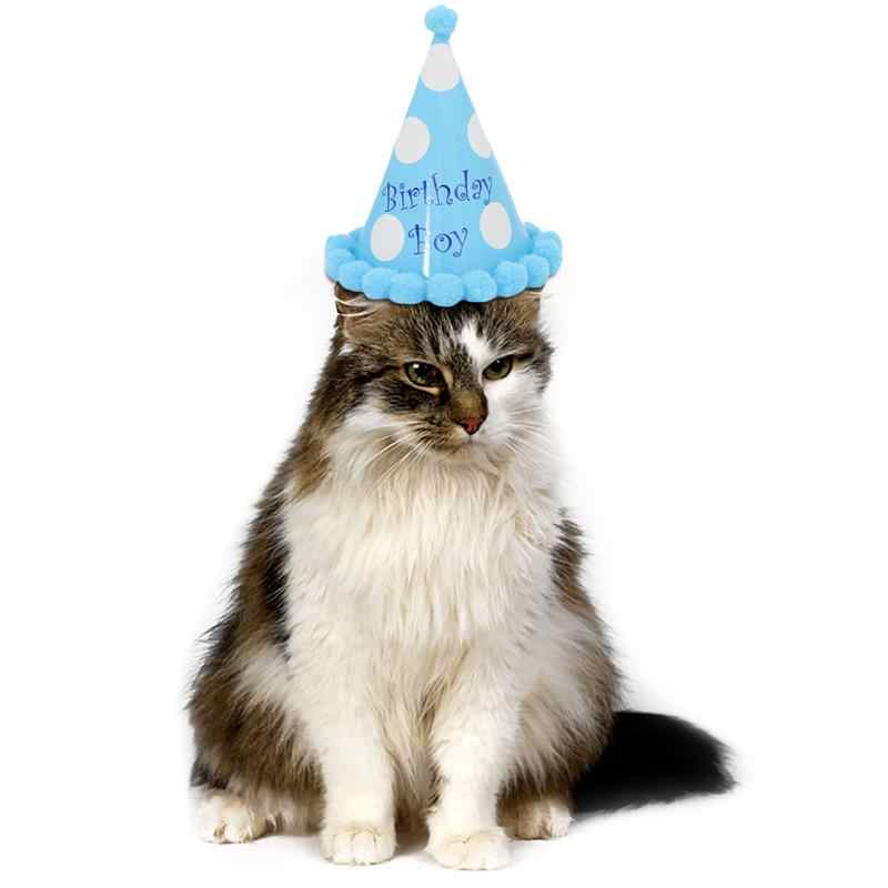 Cute Pet Dog Cat Headgear Birthday Hats Dot With Hairball Cap Party Cone Hat For