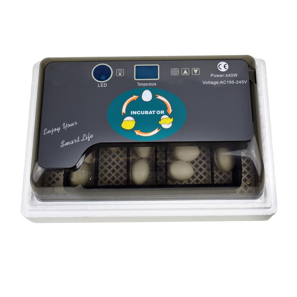 Adeeing Mini Home Incubators for Chicken Quail Duck Bird Eggs