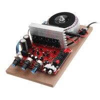 200W 220V High Power Amplifier Field Effect Transistor Front And Back Hi Fi Power Amplifier Board