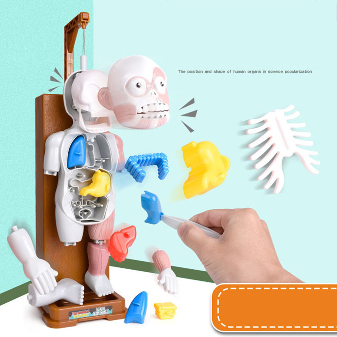 Scary Human Body Model Trick Joke Game Creepy 3D Puzzle Novelties Toys Gift Model Assembled Toy April Fools Day Toy