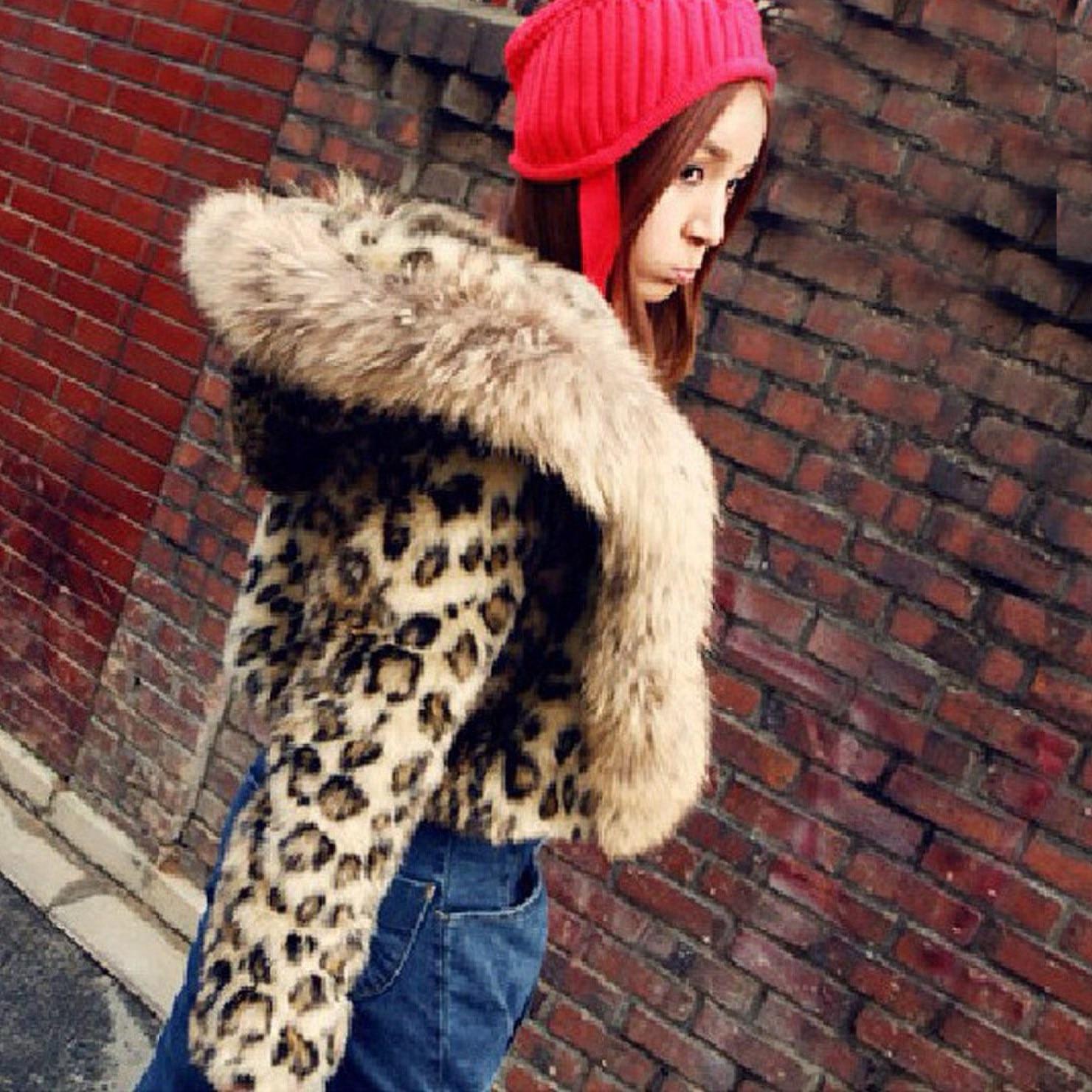 Hiver De Mode Femmes Léopard manteau imprimé décontracté à manches longues Chaud Manteau En Fausse Fourrure Faux col de fourrure Veste Courte Outwear