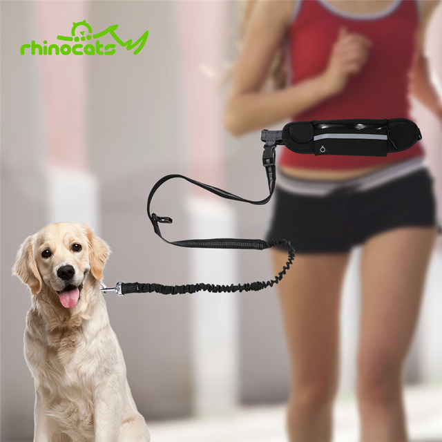 Nylon Dog Running Leash Hands Free Walking Show Lead Leash For Small Medium Dog Puppy Cat Pet With Retractable Bungee Waist Belt