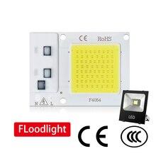 COB LED Chip 50W 220V/110V 30W 20W 10W Smart IC No Need Driver Bulb Lamp For DIY Floodlight Spotlight