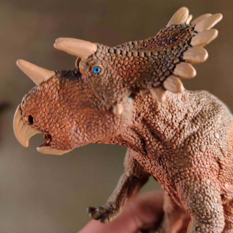Safari Regaliceratops Collection Of New Dinosaur Model Toys 17cm Produced In 2018