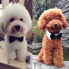 Домашние животные белый ошейник черный узел Очаровательная собака кошка ПЭТ полиэстер хлопчатобумажные галстуки-бабочки галстук-бабочка воротник одежда для свадьбы Хэллоуин вечеринки