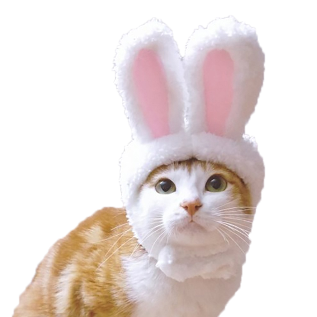 cute-funny-pet-cat-dog-bunny-ears-dress-cap-easter-rabbit-ear-headdress-costume-cosplay-clothing-props-for-home-pet