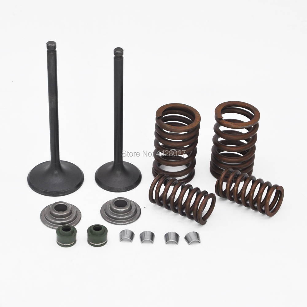 Valve Reduild Kit Intake and Exhause Valves Springs Assembly For CF250 250cc ATV Quad Bike Go Kart Scooter Moped