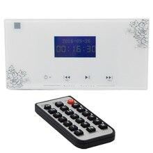 Sistema de áudio doméstico, sistema de música, sistema de teto, amplificador estéreo digital, no amplificador de parede