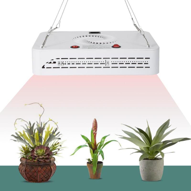 600 W LED à spectre complet plante poussent lumière jardin légumes lampe de croissance pour plantes d'intérieur tente serre maison Vegs jardin