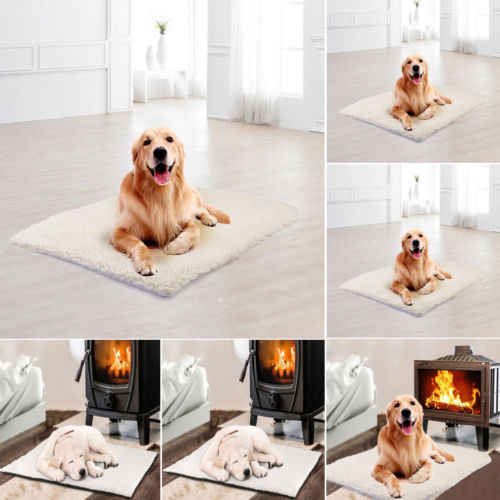 Pet Bed For Dog Cat Crate Mat Soft Warm Pad Liner Home Indoor Outdoor Warmer Bed Houses Kennels Pens Aliexpress