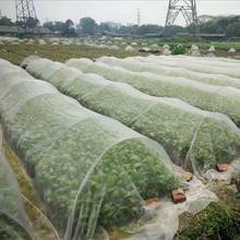 Anti Bird Mesh Garden Bird Net Netting Vegetables Pest Plant Crops Protect Mesh Anti Bird Net Mesh Cloth + PE Garden Supplies