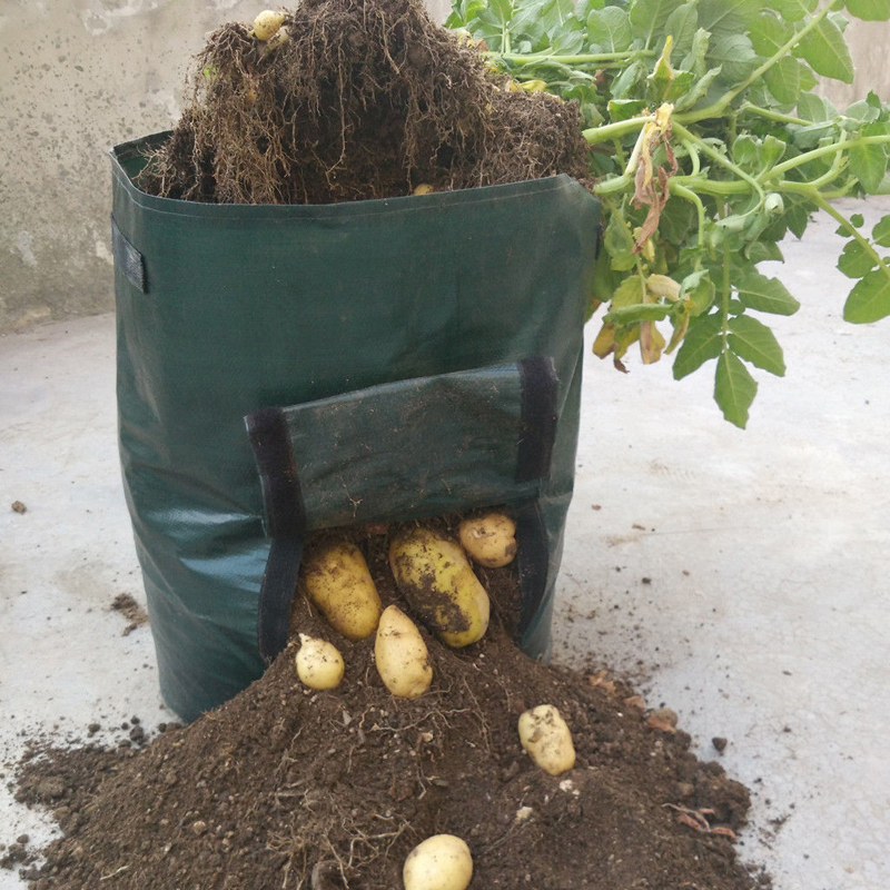 Image 2 - PE Flower Pots Potato Planting Container Vertical Vegetable Garden Pots For Seedlings Grow Seedling Bags Greenhouse For Plants-in Grow Bags from Home & Garden