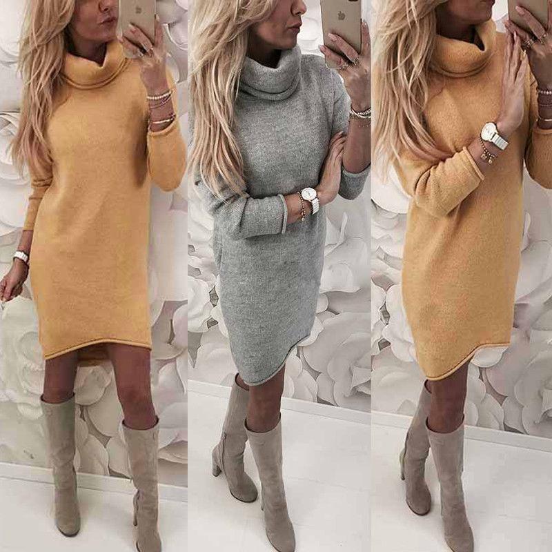 Womens Knitted Sweater Jumper Turtleneck Mini Dress Ladies Knitwear Winter Long Sleeve Dress