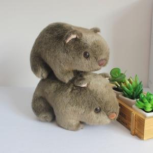 Simulation Toy Wombat Cute Ham
