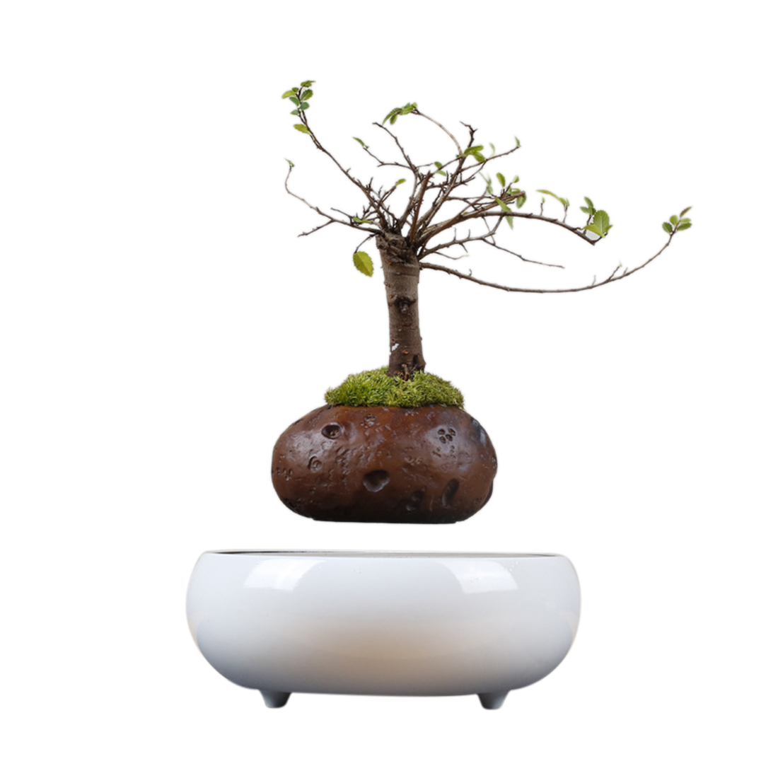 New Popular Suspended Plant <font><b>Pot</b></font> Floating <font><b>Magnetic</b></font> Plant with Imitation Ceramic Base for Home Office Garden Decor - EU Plug image