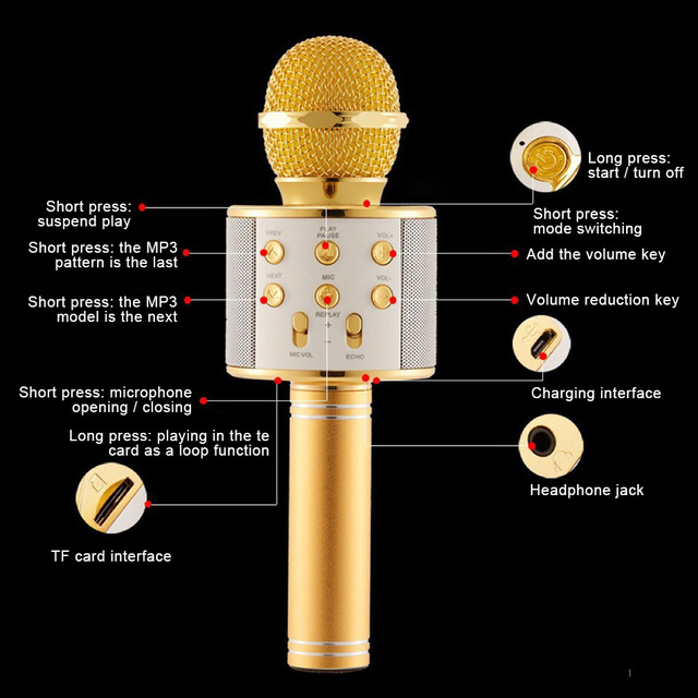 Professional Wireless karaoke Microphone Speaker