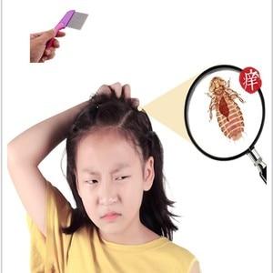 Image 2 - Testa pidocchi rimozione dei capelli Pettine In Acciaio Inox Nit Testa Capelli Pidocchi Pettine di Metallo Belle Dentata Pulce Fuggire Con Manico Spazzola Per Capelli strumenti