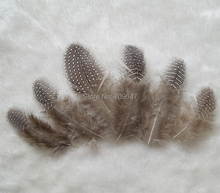 100pcs/lot!5-10cm Guinea Fowl Feathers Real Spotted Loose Natural For Crafts With Small White Polka Dots