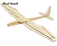 RC Plane Laser Cut Balsa Wood Airplanes sunbird 2017 motor glider Wingspan 1600mm Balsa Wood Model Building Kit