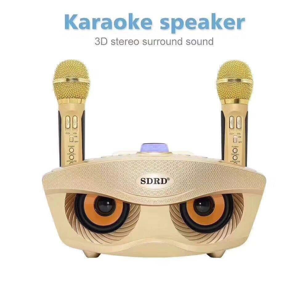 SD 306 Portable famille karaoké système deux Microphones sans fil avec 20w stéréo Bluetooth haut parleur condensateur karaoké Microphone - 4