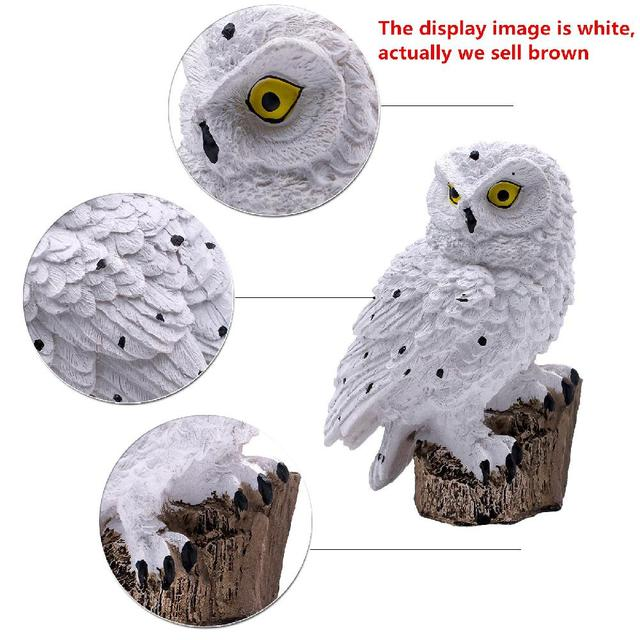 SOLLED Owl Solar Light With Solar LED Panel Fake Owl Waterproof IP65 Outdoor Solar Powered Led Path Lawn Yard Garden Lamps 3