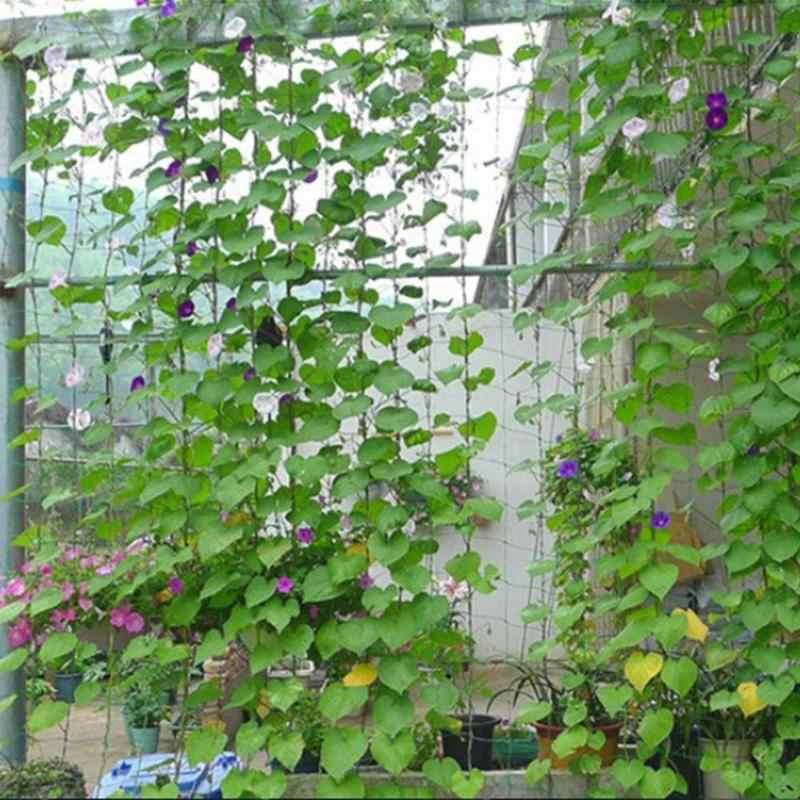 1.8x2.7 m Nylon Flor Planta Fruta Jardim Plantas de Escalada Quadro Rede de Cerca Do Jardim Cerca Do Jardim Latada Net Net bandeja Pote de plantas daninhas
