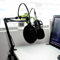 Newest BM 800 Karaoke Studio Cardiod Condenser Capacitor Microphone Music Recording Mic for PC Laptop Record KTV Singing