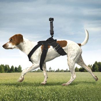 BEESCLOVER Pet Dog Chest Band Strap Camera Holder Cinto Acessórios para DJI OSMO Pocket Gimbal para Gopro 1