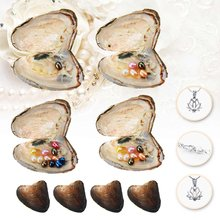 Natural Pearl Freshwater Cultured Pearl Oyster Multi-Color Rice Bead Oval Wishes Pearl Oyster DIY Birthday Gifts Mussel Fashion(China)