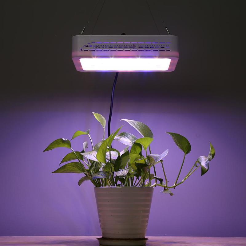 600W Full Spectrum LED Plant Grow Light Garden Vegetables Growing Lamp For Indoor Plant Seedling Grow and Flower Growth600W Full Spectrum LED Plant Grow Light Garden Vegetables Growing Lamp For Indoor Plant Seedling Grow and Flower Growth