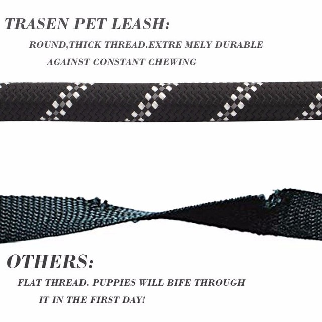 Active Dog Reflective Leash For Running Tracking Hiking and Mountain Climbing