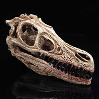 1:10 Retro Velociraptor Dinosaur Resin Skull Head Model Statue Craft Collection Medical Science School Educational Supply