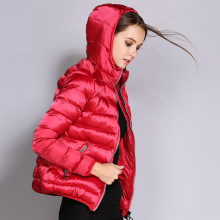 ae4a11c3c9f5a Lightweight Winter Hooded Coat Jacket Women Promotion-Shop for ...
